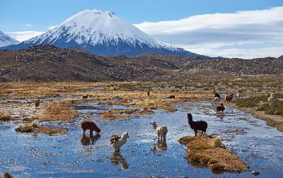 Chile 400X2522