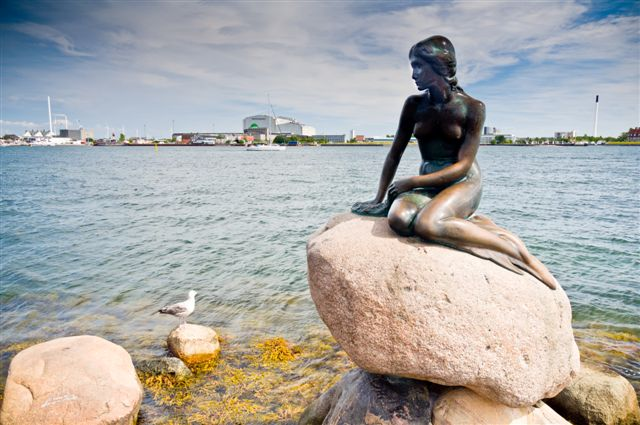 Copenhagen, August 23, Little Mermaid statue in Copenhagen celebrates its 99 birthday. Copenhagen, Denmark, August 23 2012