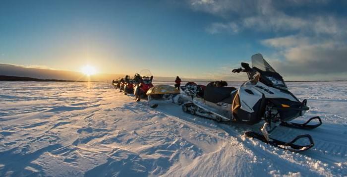 Lapland nature