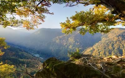 טיול משפחות לגרמניה להיער השחור וחבל אלזאס