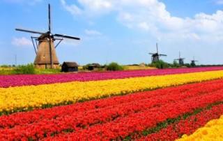 טיול_נוף_הולנד