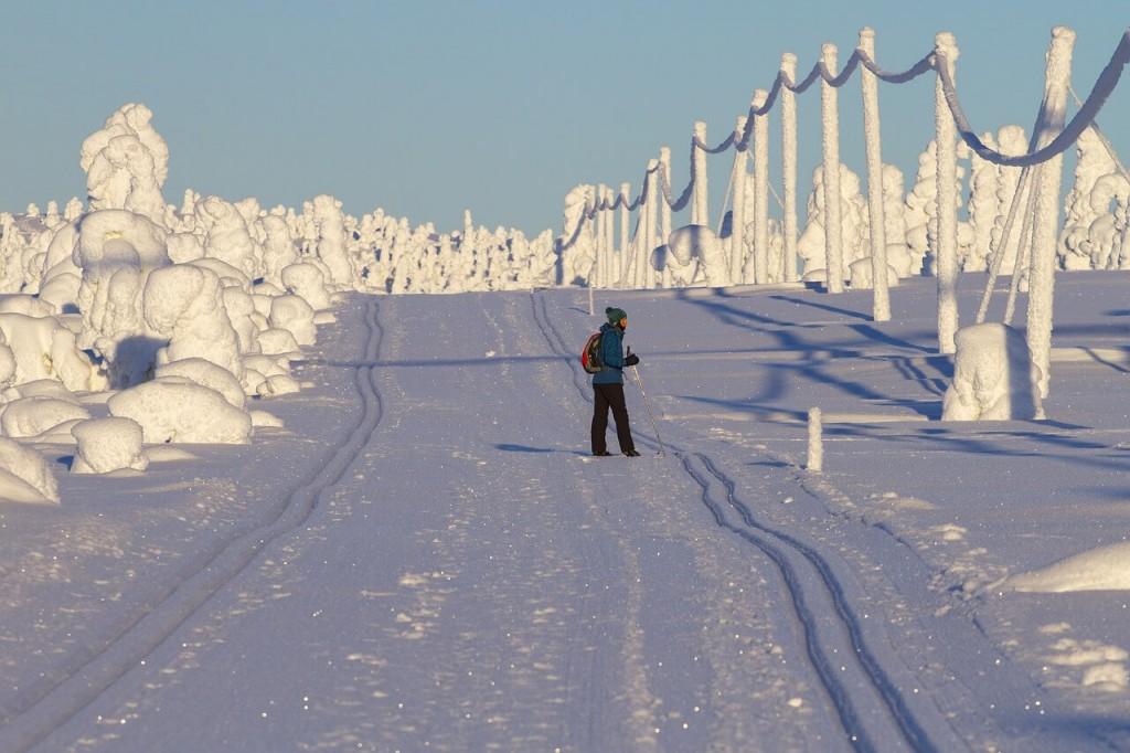 מסלול הליכה בלפלנד